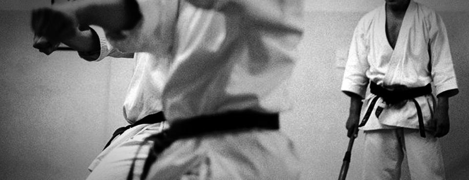 Karate no shugyo wa issho de aru